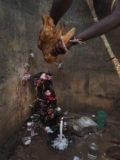 Tieropfer für ein Voodoo-Fetisch in Ouida, Benin. Januar 2018